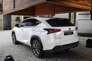 Lexus NX rear view