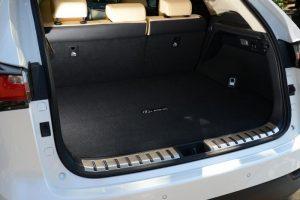 Lexus NX boot